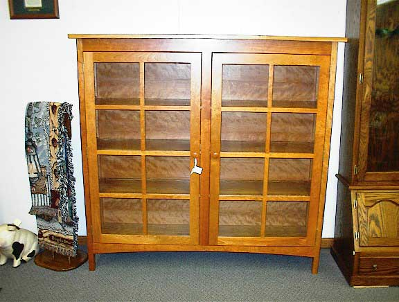 craftsman bookcases with doors 2
